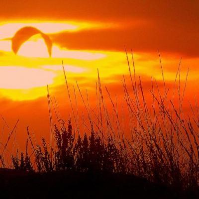 couché de soleil dunes de Beauduc-www.1veloc.fr-1veloc Arles 2